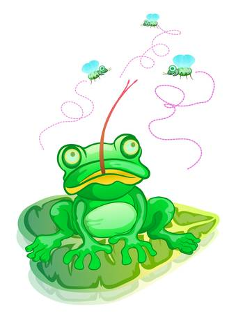 frog hunting flies isolated on white color Vector