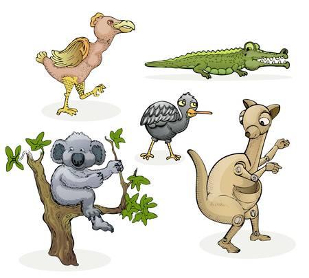 australian animal: animales australianos aislado en blanco