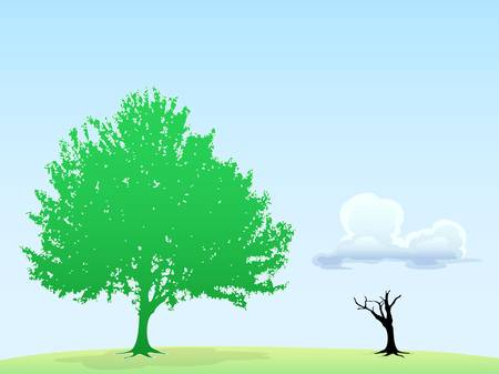 green tree ans dry tree in blue sky background Stock Vector - 14593555