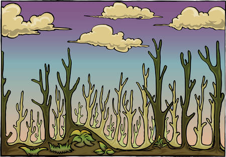 dry forest cartoon illustration