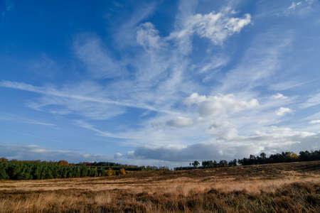 Autumn Landscape across Cannock Chase, Staffordshire Stock Photo