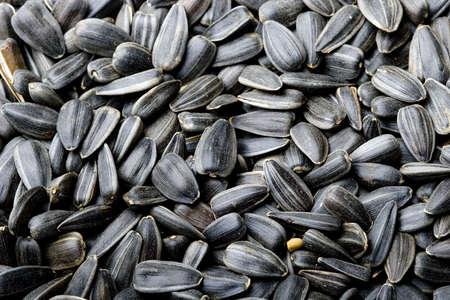 Black sunflower seeds background