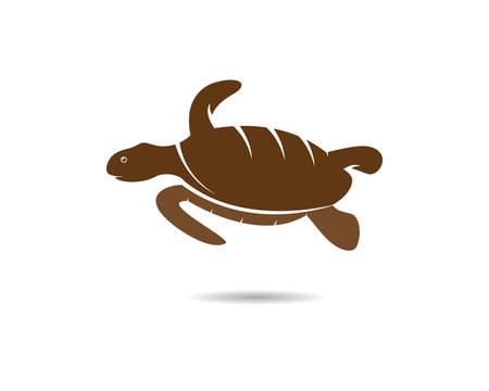 Turtle animal cartoon icon image vector illustration design