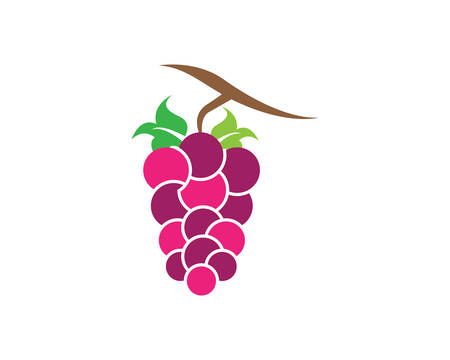 Bunch of wine grapes with leaf icon for food apps and websites