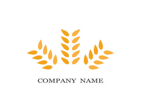 Agriculture wheat template icon design