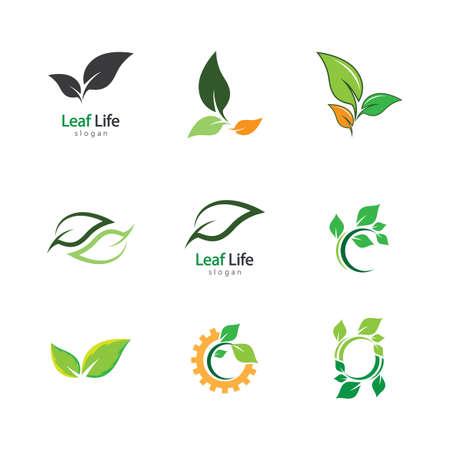 Leaf symbol vector icon illustration Illustration