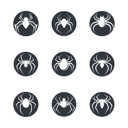 Spider symbol vector icon illustration design
