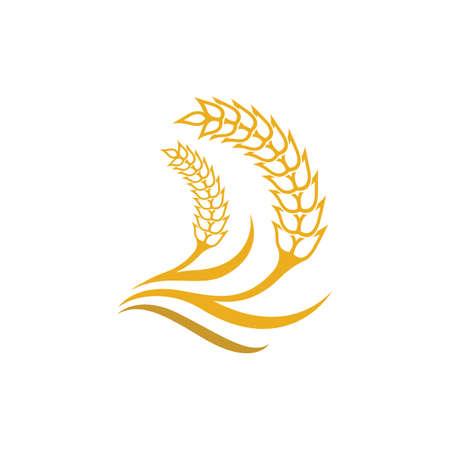 Wheat vector icon illustration design 일러스트