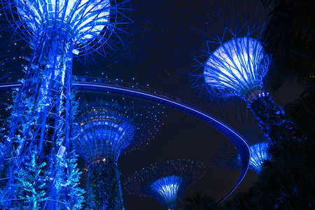 refelction: Super Trees in the New Botanical Gardens, Singapore