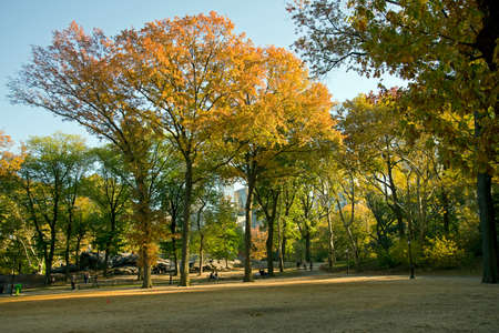 folliage: Indian Summer in the New Yorks Central Park