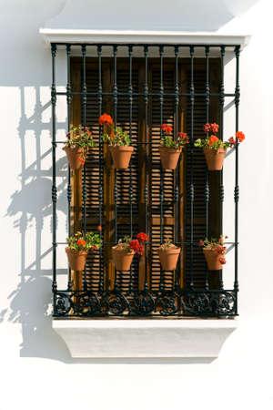 flower pots: Decorative flower pots