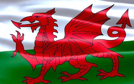 welsh flag: Welsh Flag