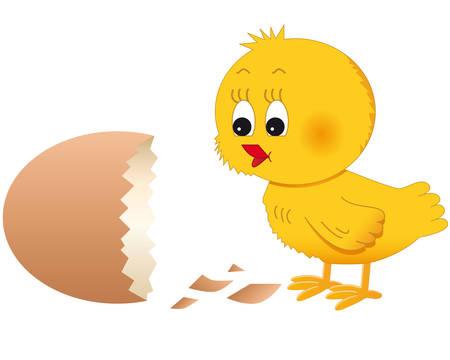 little chick and brocken egg Stock Vector - 8576469