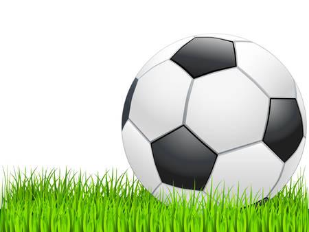 soccer ball on green grass Stock Vector - 8678944