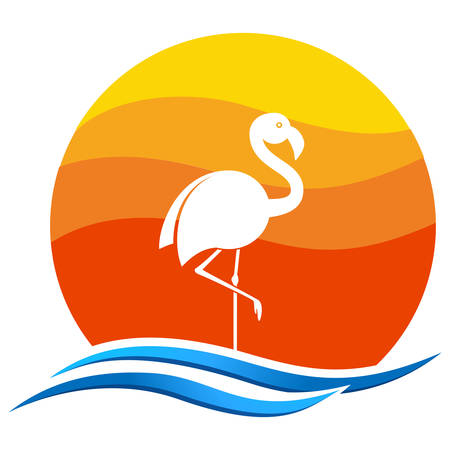 flamingo in the sunset Illustration