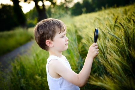 boy looks at the grain through a magnifying glass photo