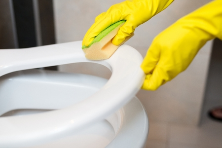 servicio domestico: Female hands cleaning toilet seat in wc with yellow sponge. Spring cleaning Foto de archivo