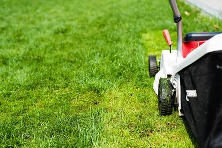 eletrical: Lawn mower cutting green grass in garden. Spring gardening.