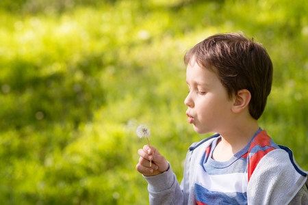 blowing dandelion: Childrens Day.  Sweet little boy blowing dandelion in the park