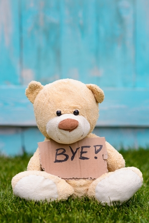 bye: Little old teddy bear sitting on the grass in the garden and holding a piece of cardboard with the information - Bye