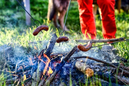 roasting: Roasting sausages on campfire with friends