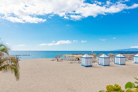 코스타 Adeje에서 열 대 야자수와 플 라 엘 Duque 해변. 테 네리 페, 카나리아 제도, 스페인
