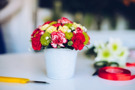 Beautiful bouquet of colorful carnation flowers in white pot