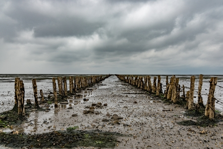 Wooden breakwater on Danish Wadden Sea on cloudy stormy day. Romo Island, Denmark Stock fotó
