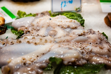 Raw fresh seafood octopus on display in fish market