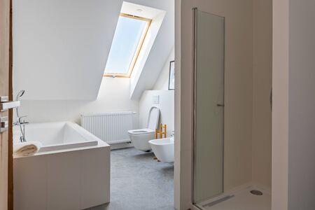 Modern bright apartment bathroom in the loft apartment