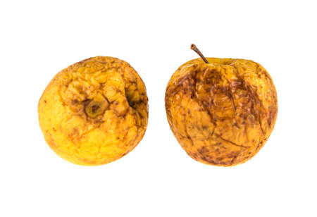 two rotten apples on isolated white background