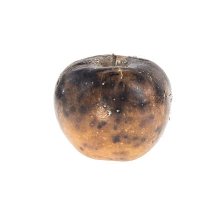 rotten apple isolated on white background Stock Photo - 110789210