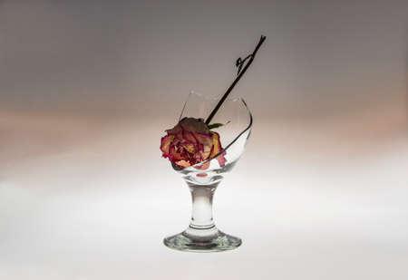 broken glass and flower