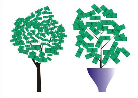 booming: money tree