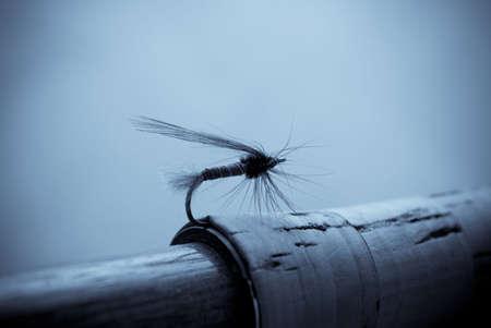 fly fishing Stock Photo - 5114505