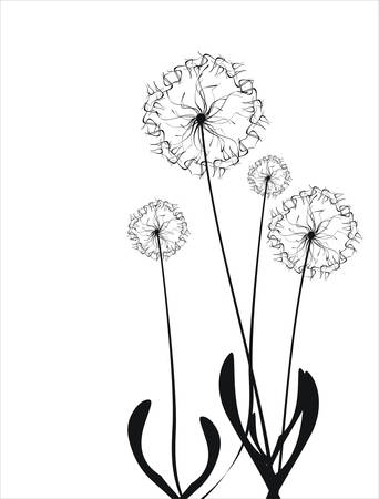 Floral collection Stock Vector - 5358172
