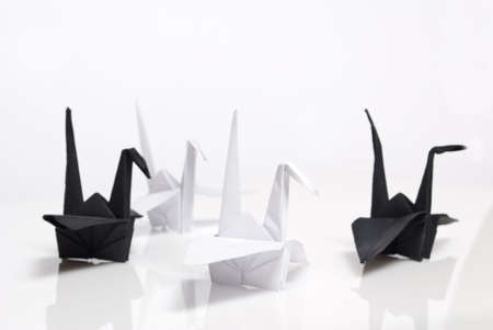 origami birds on a white background Stock Photo - 6571428