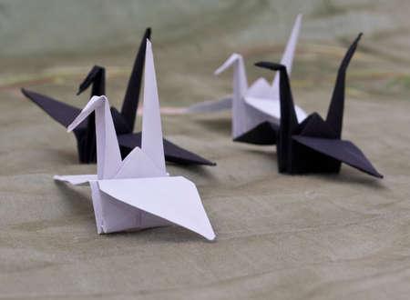 origami birds on a white background Stock Photo - 6571542