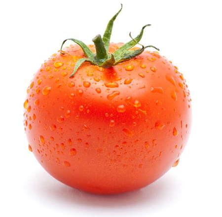 Fresh tomato Stock Photo - 7296550