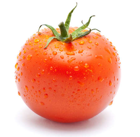 Fresh tomato Stock Photo - 7296550