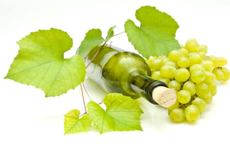 vine and bottle of wine Stock Photo - 7854326