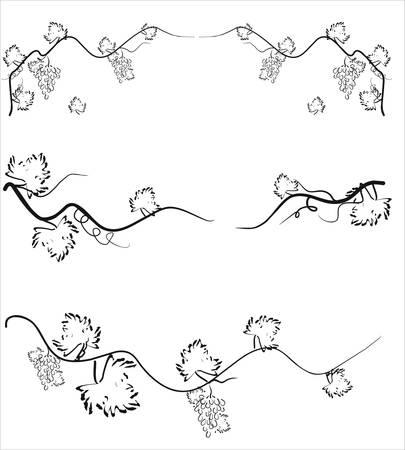 Illustration du vecteur. Grappe de raisin avec des feuilles.