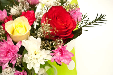 colorize: flowers on the white background Stock Photo