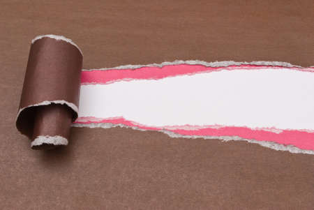 ripped paper photo
