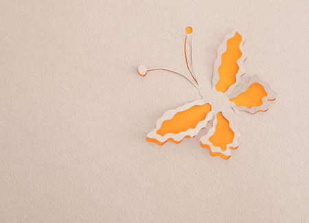 Butterfly origami Stock Photo - 15365605
