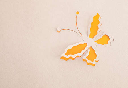 Butterfly origami Stock Photo - 15365598