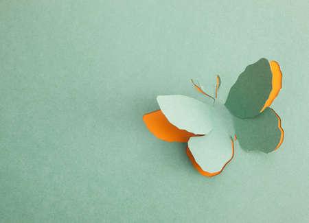 las emociones: Mariposa origami