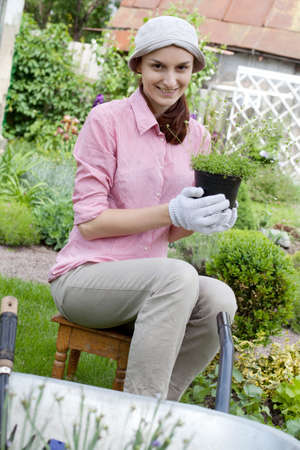 Gardening concept - woman with seedlings in the garden photo