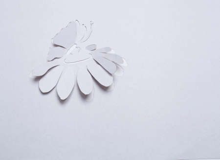 Image of abstract white flower and butterfly  handmade.Eco background. photo