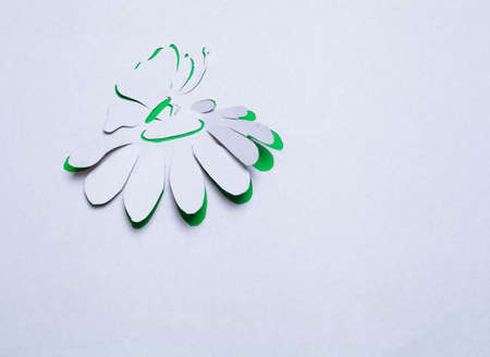 Image of abstract green flower and butterfly  handmade.Eco background. photo